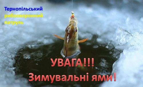 У водоймах Тернопільської області встановлюється заборона на лов риби в зимувальних ямах